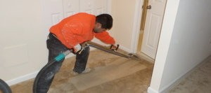 Mold Cleanup On Carpet After A Flood